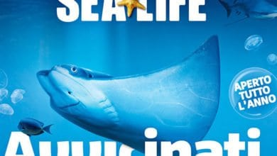 Photo of Gardaland SEA LIFE Aquarium Biglietti Gratis e Scontati