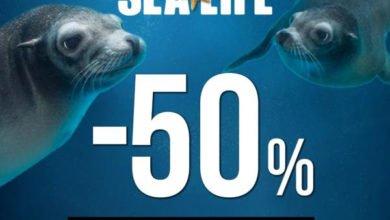 Photo of Gardaland SEA LIFE Aquarium Offerta Black Friday -50% di Sconto